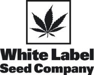 White Label Seeds Company AUTOFLORECIENTES